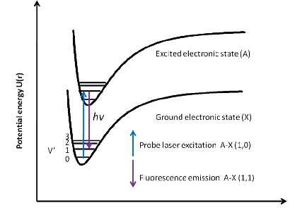 schematic potential energy curves describing the LIF process
